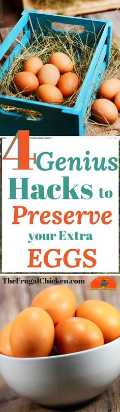 Got extra eggs? Preserve them! Here's 4 genius ways to keep your chicken eggs fresh, long after they've been laid!