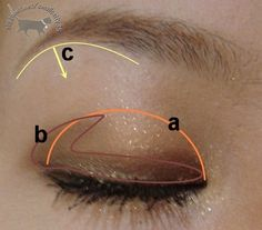 neutral eye pictorial