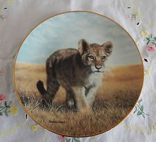 YOUNG EXPLORER PLATE SMALL WONDER OF THE WILD (Cat) Big Cats Art, Cat Art, Small Wonder, Panther, Plates, Animals, Licence Plates, Dishes, Animales