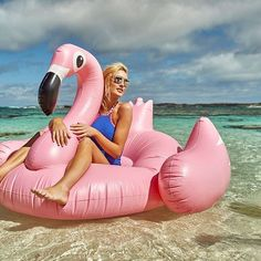 Shop our Giant Flamingo as seen on I'm a Celebrity Get Me Out of Here last night! Click our bio for link @imacelebrityau #rottnestisland #rottnest #flamingo #flamingofloat #imacelebrityau #Perthlife #weekend #staypositive #floatie #beachlife #soPerth #westisbest #perthisok #summer #Perth #australia #westernaustralia #wanderlust #beach #water #ocean #summervibes #goodvibes #potd #sun #beautiful #fun #love #moodygrams #instagood Western Australia, Perth Australia, Inflatable Pool Toys, Flamingo Float, Pool Floats, Summer Vibes, Swimming, Photo And Video, Night