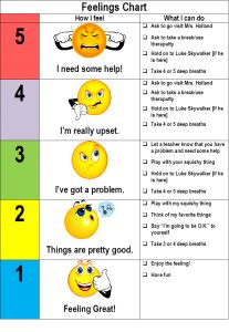 Description of a whole class functional communication lesson.
