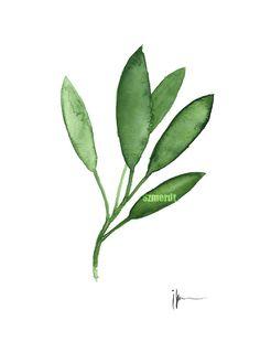 Sage Kitchen Decor Green Watercolor Art Print by ColorWatercolor