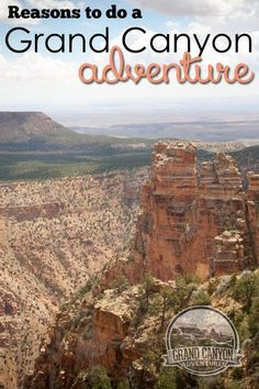 Have your own grand canyon adventures. Find out why it might be worth it to your family to hire a tour.