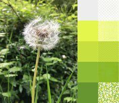 Dandelion -  #123quilt #colorplayfriday #color #palette #colorpalette #inspiration #colorinspiration #ilovecolor #colorcrush #ilovefabric #fabriclove #fabricaddict  https://123quilt.blogspot.com/2016/08/color-play-friday-dandelion.html