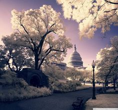See the Invisible: Infrared Photography • Photo Vide