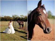 Bride Horse Pictures