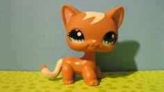 Littlest Pet Shop Toys | Littlest-Pet-Shop-Toys-littlest-pet-shop-32046186-1600-899.jpg