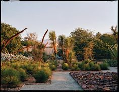 The zigzag step-fret inspiration continues throughout the garden, ecologicalrequirements of plants determined a few monochromatic rock beds, and repetitive plantings of agave are included to emphasize its cultural and biogeographic significance.  source: GardenDesign.com