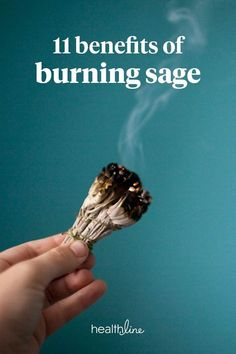 Burning sage (also known as smudging) is an ancient spiritual ritual. The most-used sage types have antimicrobial properties. Read on to learn more about this benefit and others, the tools you need to get started, when to smudge, and more. Calendula Benefits, Matcha Benefits, Coconut Health Benefits, Benefits Of Burning Sage, Sage Health Benefits, Sage Smudging, Smudging Prayer, Types Of Tea, Kraut