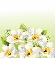 flowers border vector