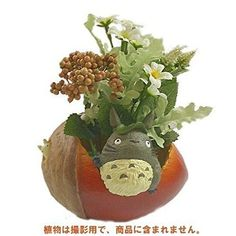 Studio Ghibli My Neighbor Totoro Flower Pot Cover Acorn Boomed Domo Arigato, Flower Pots, Flowers, My Neighbor Totoro, Studio Ghibli, Acorn, Egg, Films, Home And Garden