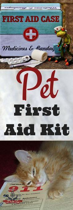 Once you have your disaster plan in place for your pets, it's time to start planning their first aid kits. Free printable Bug Out Bag guide