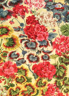 Gertrude Natural Cotton Fabric by Philip Jacobs for Rowan Westminster