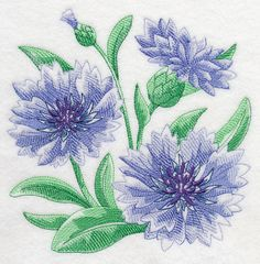 Machine Embroidery Designs at Embroidery Library! -41715