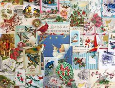 Birds of Christmas*Christmas Inspiration Kit*Vintage Christmas Ephemera Paper Pack by ScrappyBird on Etsy