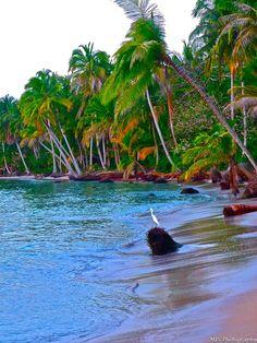 The Bocas del Drago shoreline at sunset, Panama