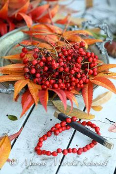 Föregående artikel Autumn Day, Autumn Leaves, Warm Colors, All The Colors, Red Berries, Garden Crafts, Fall Flowers, Autumn Inspiration, Fall Decor