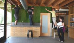 diy-green-living-wall-astroturf-wall-robeson-design-8