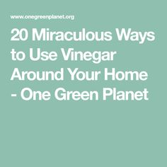 20 Miraculous Ways to Use Vinegar Around Your Home - One Green Planet