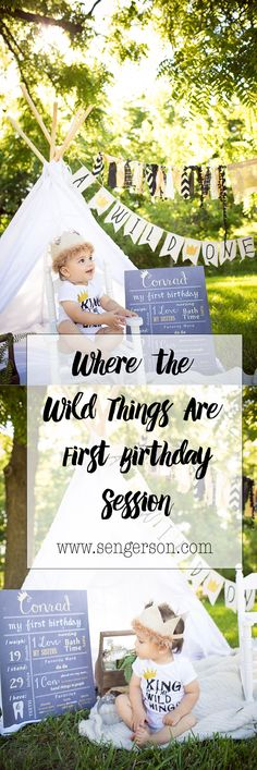 Where the wild things are first birthday photoshoot ideas! Great cake smash ideas for king of the wild things. Great shots on the website! So stinkin cute! - www.sengerson.com