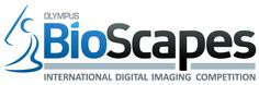 Check out Olympus BioScapes International Digital Imaging Competition!