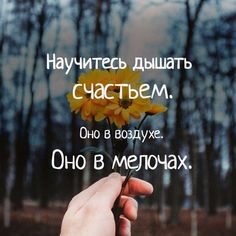 Bible Quotes, Words Quotes, Motivational Quotes, Inspirational Quotes, Sayings, Motivation Letter, Russian Quotes, Positive Phrases, Different Quotes