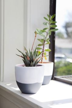 DIY Succulent Pots - The Effortless Chic