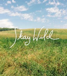 Stay Wild / The Fresh Exchange Quotes To Live By, Me Quotes, Hiking Quotes, Stay Wild, To Infinity And Beyond, Wild Child, Gypsy Soul, Wild Hearts, The Fresh