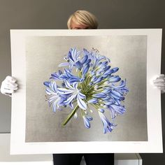 """Ingrid Elias Botanical Art on Instagram: """"Loved doing this...really exciting working with this precious material. 'Agapanthus XL Palladium' Hand applied palladium leaf and…"""""""