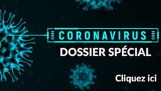 Dossier spécial Coronavirus Covid-19 Recycled Bottles, Recycle Plastic Bottles, Mediterranean Chickpea Salad, Diy Holiday Gifts, Outdoor Christmas Decorations, Vinaigrette, Biscuits, Brunch, Desserts
