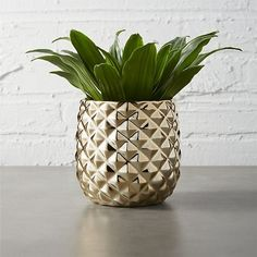 Give everyone green envy with modern planters and garden pots. Shop indoor and outdoor plant holders such as hanging pots, rail planters and more. Pineapple Vase, Pineapple Room, Pineapple Kitchen, Cork, Metal Vase, Metal Planters, Chalk Paint Furniture, Furniture Storage, Bud Vases