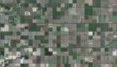 "A grid of farm fields north of Winkler, Manitoba. See it <a href=""http://goo.gl/maps/fH6gd"">mapped</a>."
