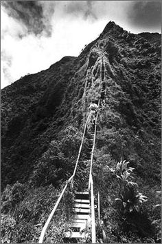 Hawaii Stairway to Heaven - there is no legal entrance to the Stairway to Heaven/Haiku Stairs up till today. so expect to be turned away or cited by Honolulu police for hiking attempts. however i've been told to park in the residential area nearby and sneak  in before 3am to avoid the cop onsite. would be perfect to catch sunrise on the top!