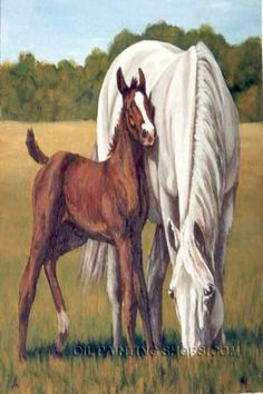 "Beautiful Framed Painting Reproduction African Animal Horse Paintings Oil, Size: 30"" x 40"", $147. Url: http://www.oilpaintingshops.com/beautiful-framed-painting-reproduction-african-animal-horse-paintings-oil-3049.html"