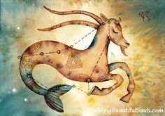 Capricorn Star Sign. For in depth info on Capricorn personality & characteristics go to http://www.buildingbeautifulsouls.com/zodiac-signs/western-zodiac/capricorn-star-sign-traits-personality-characteristics/