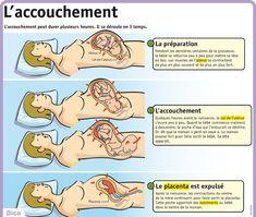 www.lepetitquotidien.fr media infography mag lpq34 lpq34-l-accouchement.jpg
