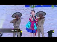 Musica Mexicana Con Mariachi 2014