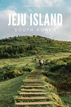 Planning to visit Jeju island? What are the best things to do in Jeju island South Korea? Read this Jeju Island Travel Guide to find out what to see and things to do in Jeju island, best places to stay in Jeju island, Jeju island tour and more. A perfect Jeju island itinerary with insider tips for what to do during 5 days in Jeju island is here. #jejuisland #southkorea #travelguide Asia Travel, South Korea Travel, Solo Travel, Japan Travel, Places To Travel, Travel Destinations, Places To Go, Jeju Island, Things To Do