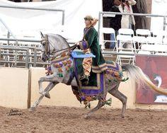 A Desert Temptation - Costume Horse