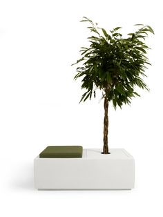 PLANT SEAT 115 - JSPR