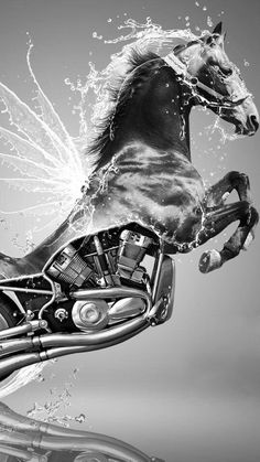 Horse power #HDNaughtyList