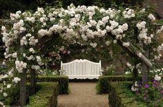 54 Best Beautiful Garden Arbor Images In 2019 Backyard