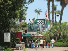 #ridecolorfully Feed the giraffes at the San Diego Zoo in San Diego, CA