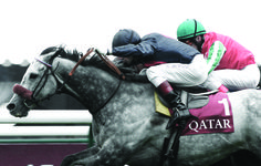 www.pegasebuzz.com | #LesBeauxDuos France Galop pour le Qatar Prix de l'Arc de Triomphe