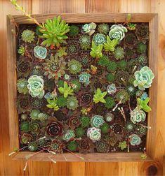 kleinen Raum vertikalen Garten umrahmt
