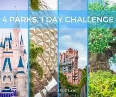 """Thinking of completing the 4 Parks, 1 Day challenge? Blogorail Blue is sharing their, tips, tricks, and strategies. Welcome aboard!     1st Stop: 4 Parks, 1 Day: Challenge AcceptedwithFrontierland Station """"On my recent visit to Walt Disney World, my husband and I completed a Disney challenge I have only dreamed about: 4 parks in 1 day! Let's take a look at how we accomplished this exciting achievement."""" -Kimberly     2nd Stop: 4 Parks, 1 Day Challenge: Capturing the Essence of Each…"""