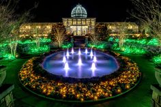GardenFest of Lights has 500,000 holiday lights that help transform Lewis Ginter Botanical Garden into a winter wonderland of fantasy, festivity and family fun.