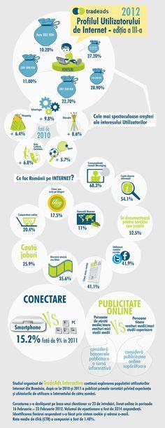 Profilul utilizatorului de internet2012