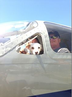 PRECIOUS CARGO: The Wings of Rescue and their amazing pilots, volunteer their time and their airplanes to rescue desperate shelter animals - - those who are on Death Row, just hours away from euthanasia - - and fly them to no-kill shelters in other parts of the country where there are few pets available for adoption, and lots of people eager to adopt.    Read the story in my blog today!  https://stargazermercantile.com/precious-cargo-the-wings-of-rescue/  #dogs #rescue #shelterdogs…