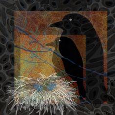 Corvus Familia Ovi #iphoneart #digitalart #digitalcollage #appart #ravens #nests #eggs #art #family